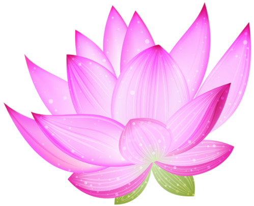 pink_lotus_png_by_hanabell1-d6l7jsi